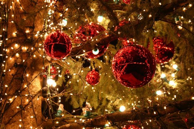 Noël en image...